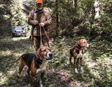 Smycz Myśliwska Runlock Hunting Leash